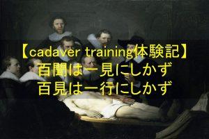 cadaver training体験記|百聞は一見に如かず、百見は一行に如かず